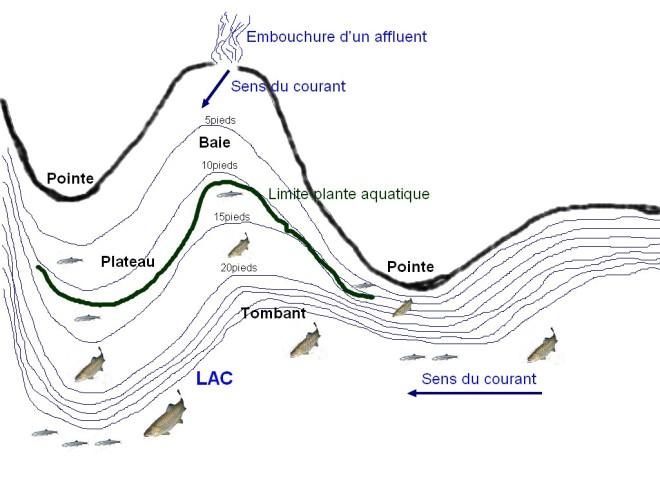 Coupe horizontale - Pêche glace