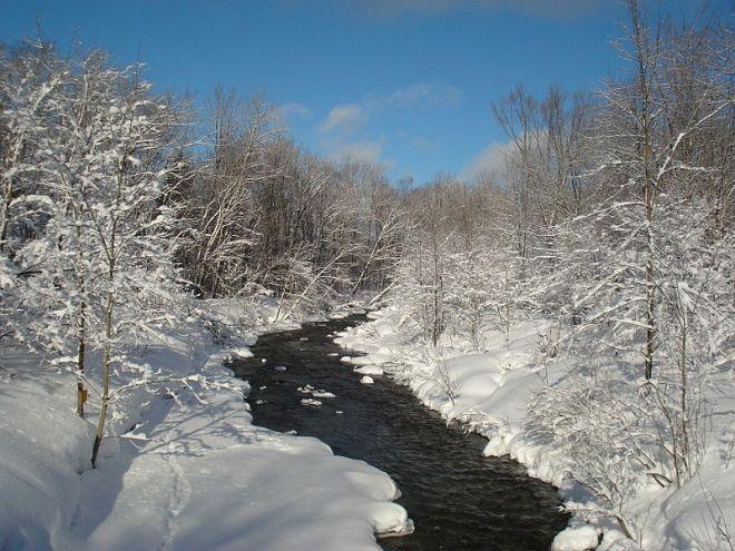 Salmon river hiver